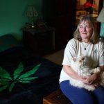 medical marijuana elderly