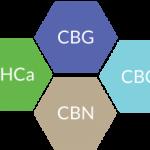 Wholesale Bulk Hemp Cannabinoid Isolate Distillate Extracts cbd cbg cbn