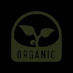 organic hemp products ingredients cbd cbg tincture oil