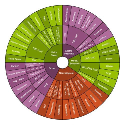 usa made hemp cbd cbg cbn products wholesale retail shop online, cannabinoids, chart, effects of, oil